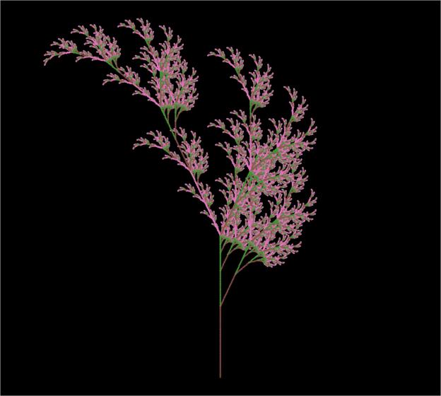 Fractal_Plant1